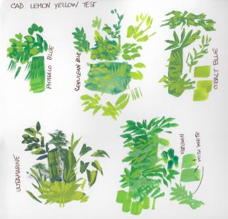 09-24-19 Mixing Greens